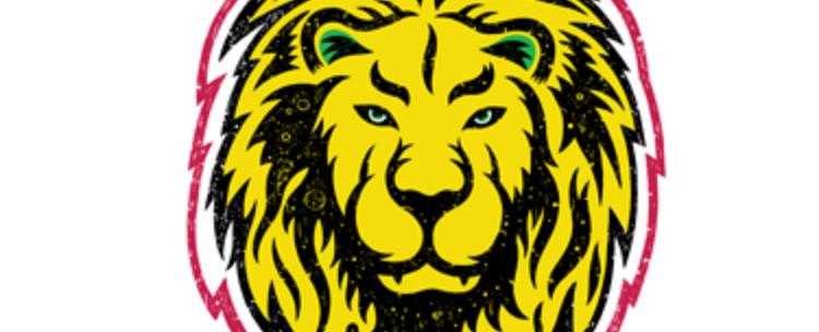 reggae fest chicago 2016 lion
